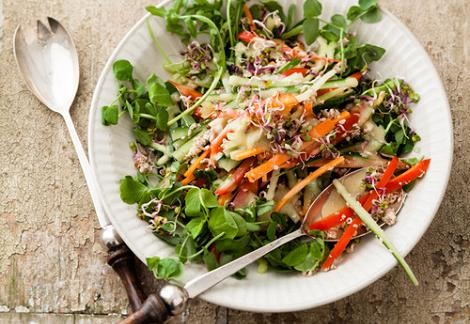 Dietas y comidas para adelgazar cynthia mayton blog - Comida sana y facil para adelgazar ...